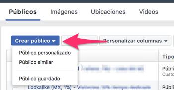 Crear_público_personalizado_con_formularios_para_clientes_potenciales
